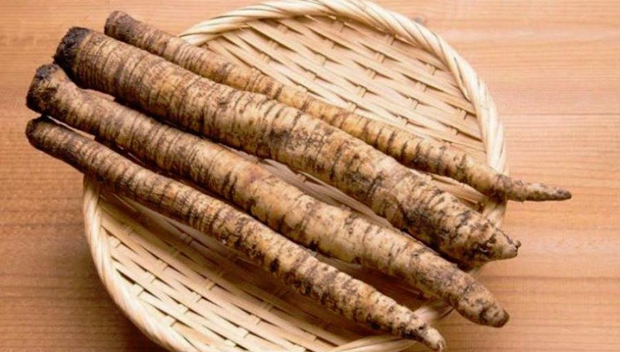 Rădăcina de brusture reduce glicemia, protejează ficatul de toxine, reduce colesterolul și…
